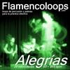 Thumbnail Flamencoloops.com - Alegrías