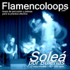 flamencoloops.com - Soleá por Bulerías