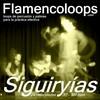Thumbnail flamencoloops.com - Siguiryías