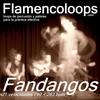 Thumbnail flamencoloops.com - Fandangos
